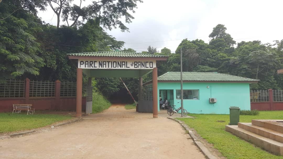 Visite de la forêt du Banco avec des élèves de CP et GS.